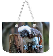 Weekender Tote Bag featuring the photograph Saguinus Oedipus  by Traven Milovich
