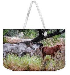 Salt River Wild Horses Weekender Tote Bag