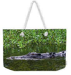 Saltwater Crocodile In Kakadu Weekender Tote Bag