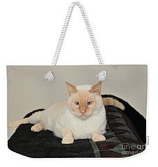 Weekender Tote Bag featuring the photograph Sam I Am by Debbie Stahre
