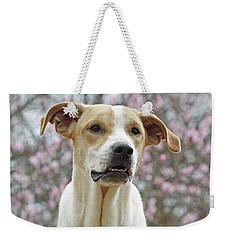 Sam In Spring Weekender Tote Bag