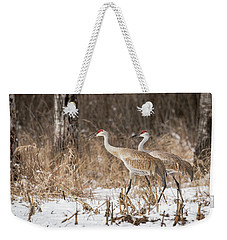 Sandhill Crane 2016-4 Weekender Tote Bag by Thomas Young