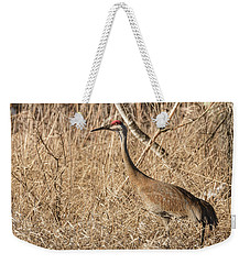 Sandhill Crane 2016-7 Weekender Tote Bag by Thomas Young