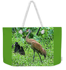 Weekender Tote Bag featuring the digital art Sandhill Crane At Sandy Ridge Reservation by Mark Madere