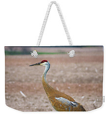 Weekender Tote Bag featuring the photograph Sandhill Crane In Profile by Bill Pevlor