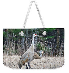 Weekender Tote Bag featuring the photograph Sandhill Cranes 1166 by Michael Peychich