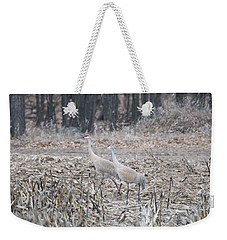 Weekender Tote Bag featuring the photograph Sandhill Cranes 1171 by Michael Peychich