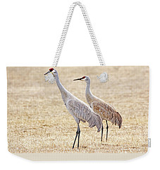 Weekender Tote Bag featuring the photograph Sandhill Cranes Of Montana by Jennie Marie Schell