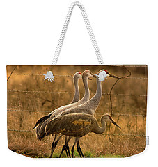 Weekender Tote Bag featuring the photograph Sandhill Cranes Texas Fence-line by Robert Frederick