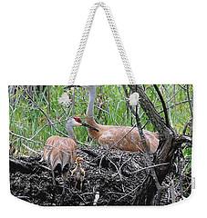 Sandhill Family  Weekender Tote Bag
