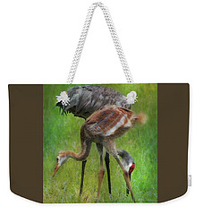 Weekender Tote Bag featuring the photograph Sandhill Mother And Chick by Barbara Chichester