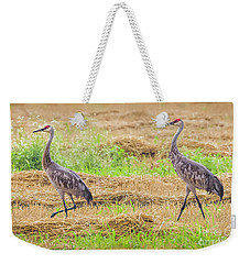 Weekender Tote Bag featuring the photograph Sandhill Pair  by Ricky L Jones