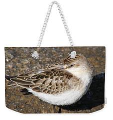 Sandpiper Weekender Tote Bag