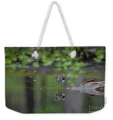 Weekender Tote Bag featuring the photograph Sandpiper In The Smokies by Douglas Stucky