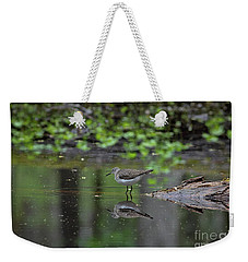 Weekender Tote Bag featuring the photograph Sandpiper In The Smokies II by Douglas Stucky