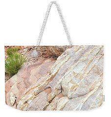 Weekender Tote Bag featuring the photograph Sandstone Feet In Valley Of Fire by Ray Mathis
