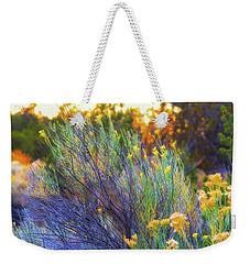 Weekender Tote Bag featuring the photograph Santa Fe Beauty by Stephen Anderson
