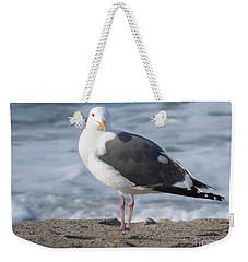 Santa Monica Seagull Weekender Tote Bag by Margaret Brooks