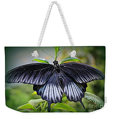 Sapphire Blue Swallowtail Butterfly Weekender Tote Bag