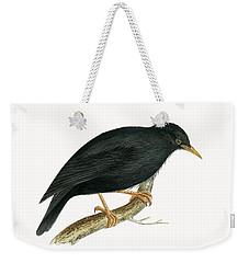 Sardinian Starling Weekender Tote Bag