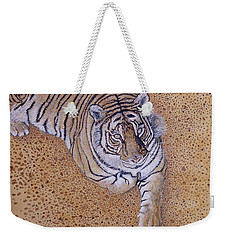 Weekender Tote Bag featuring the painting Sasha by Tom Roderick