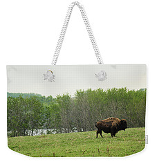 Saskatchewan Buffalo Weekender Tote Bag by Ryan Crouse