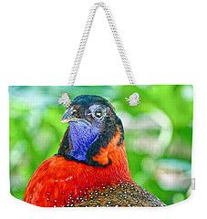 Weekender Tote Bag featuring the photograph Satyr Tragopan  by Judy Kay
