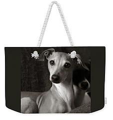 Say What Italian Greyhound Weekender Tote Bag