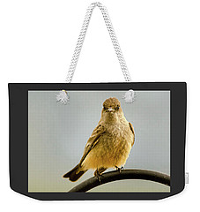 Say's Phoebe Ranch Bird Weekender Tote Bag