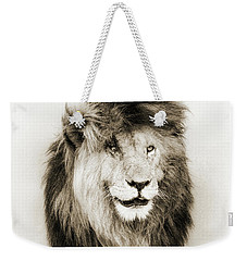 Scar Lion Closeup Square Sepia Weekender Tote Bag
