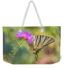 Scarce Swallowtail - Iphiclides Podalirius Weekender Tote Bag