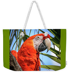 Weekender Tote Bag featuring the photograph Scarlet Macaw by Steven Sparks