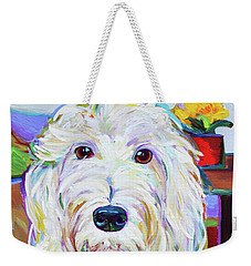 Schnoodle Weekender Tote Bag by Robert Phelps