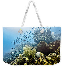 Weekender Tote Bag featuring the photograph School Fish Rainbow by Perla Copernik