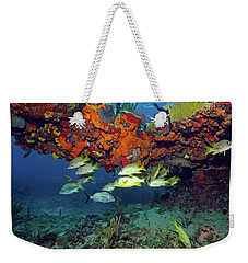 Schooling Fish At Calf Rock Weekender Tote Bag