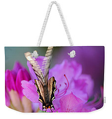 Weekender Tote Bag featuring the photograph Scissorwings by Susan Capuano