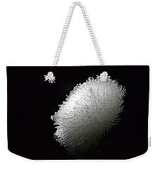 Scolicite Weekender Tote Bag