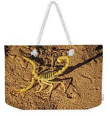 Scorpion Weekender Tote Bag by Robert Bales