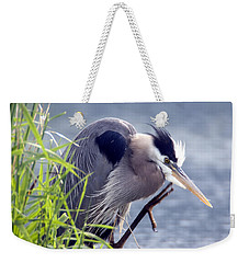 Scratch The Itch Weekender Tote Bag