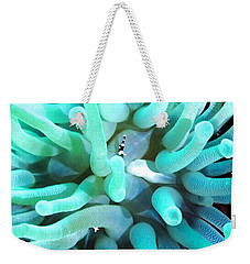 Sea Anemone And Squat Shrimp Weekender Tote Bag by Amy McDaniel