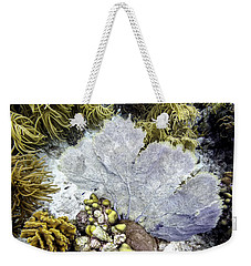 Weekender Tote Bag featuring the photograph Sea Fan Coral by Perla Copernik