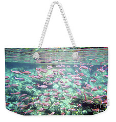 Sea Of Fish 2 Weekender Tote Bag by Karen Nicholson