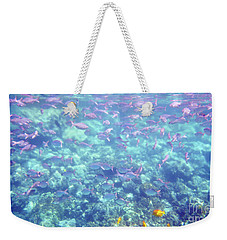 Weekender Tote Bag featuring the photograph Sea Of Fish by Karen Nicholson