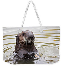 Sea Otter With Clam Weekender Tote Bag