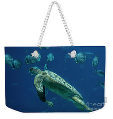 Weekender Tote Bag featuring the photograph Sea Turtle by Barbara Bowen