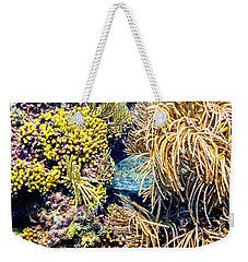 Weekender Tote Bag featuring the photograph Sea Turtle Hiding by Perla Copernik