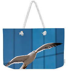 Seabird Flying On The Glass Building Background Weekender Tote Bag