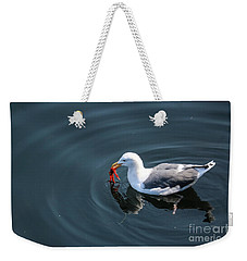 Weekender Tote Bag featuring the photograph Seagull Feasting On Crab by Suzanne Luft