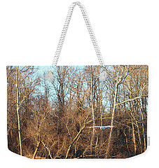 Weekender Tote Bag featuring the photograph Seagull Flying by Melinda Blackman