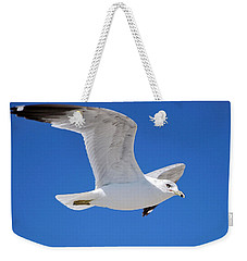 Weekender Tote Bag featuring the photograph Seagull by Ludwig Keck
